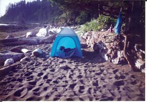 Notice raccoon tracks in front of tent.