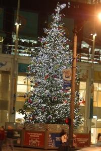 Westlake Center Xmas Tree
