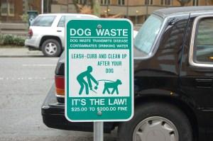 doggie-doo-0011