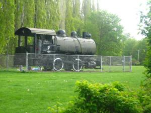 Old logging train at the park